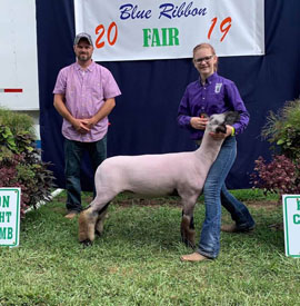 Shellhouse Livestock :: Recent Winners